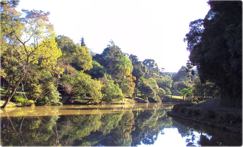 Fotos do Parque da Barreirinha