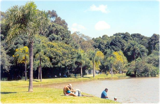 Parquedo Bacacheri